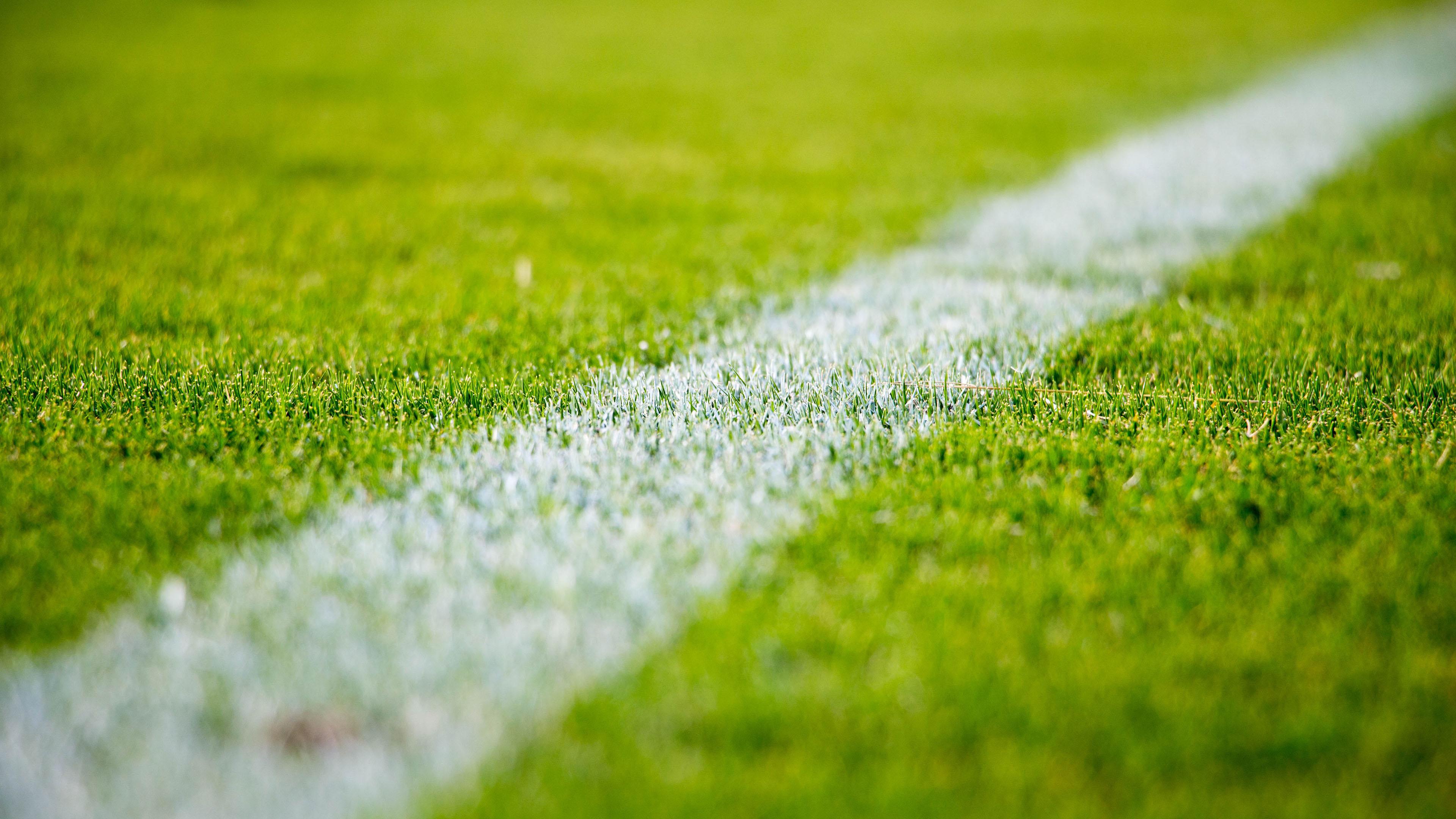 劲爆体育,球场,绿茵场,草地
