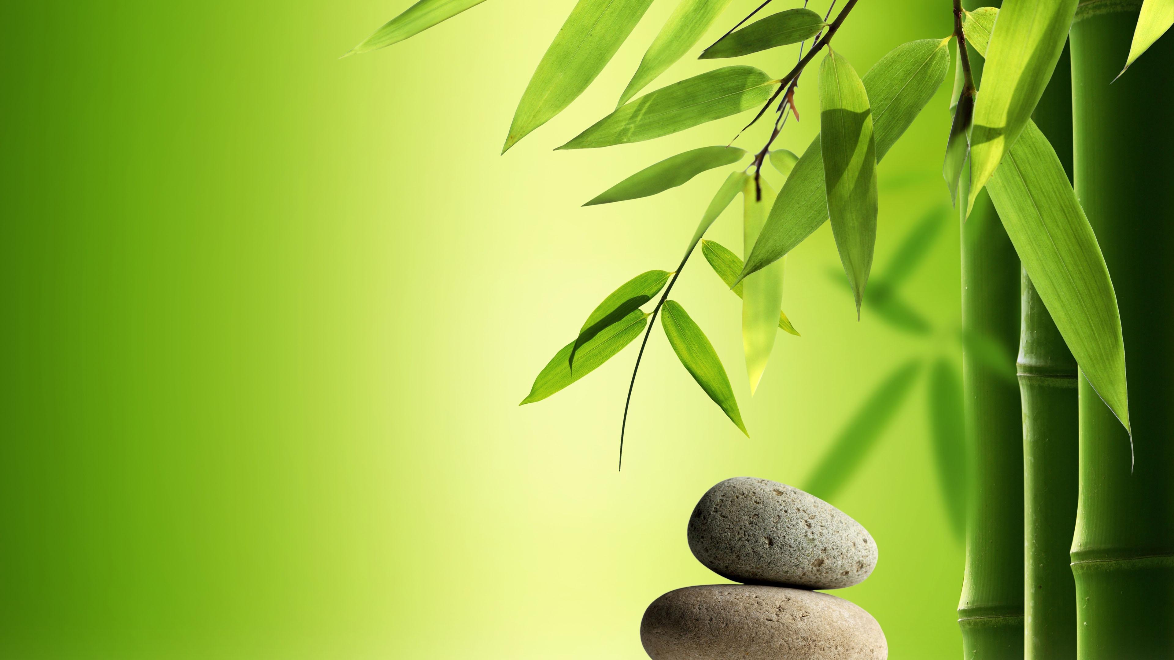 小清新,护眼壁纸,石头,竹,安静,禅意