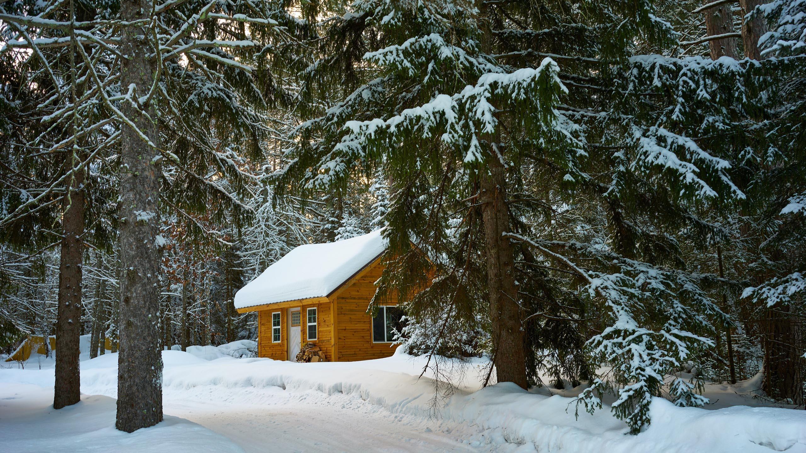风景大片,冰天雪地,树林,小木屋,大雪