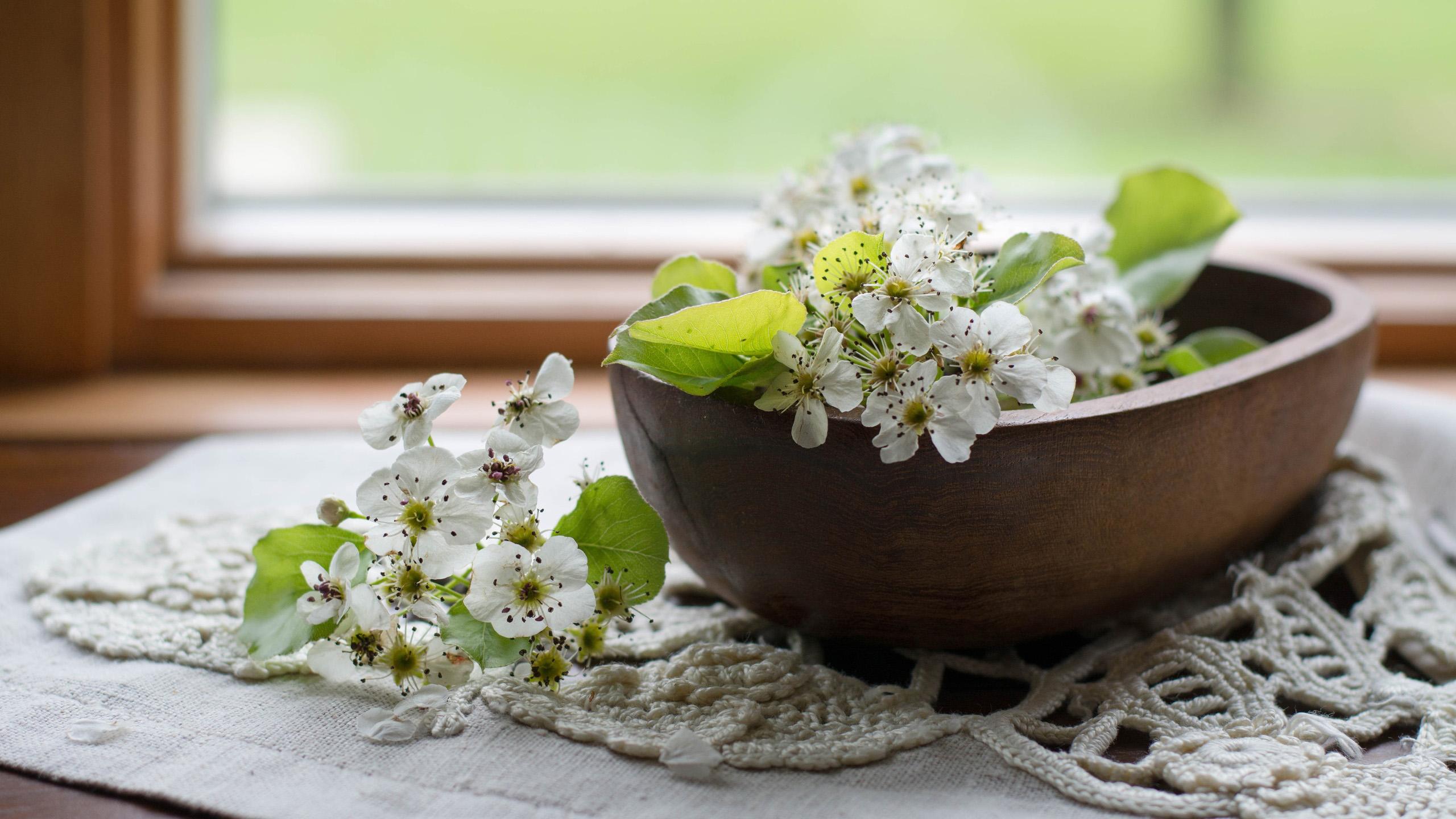 小清新,鸟语花香,碎花,茉莉,温馨