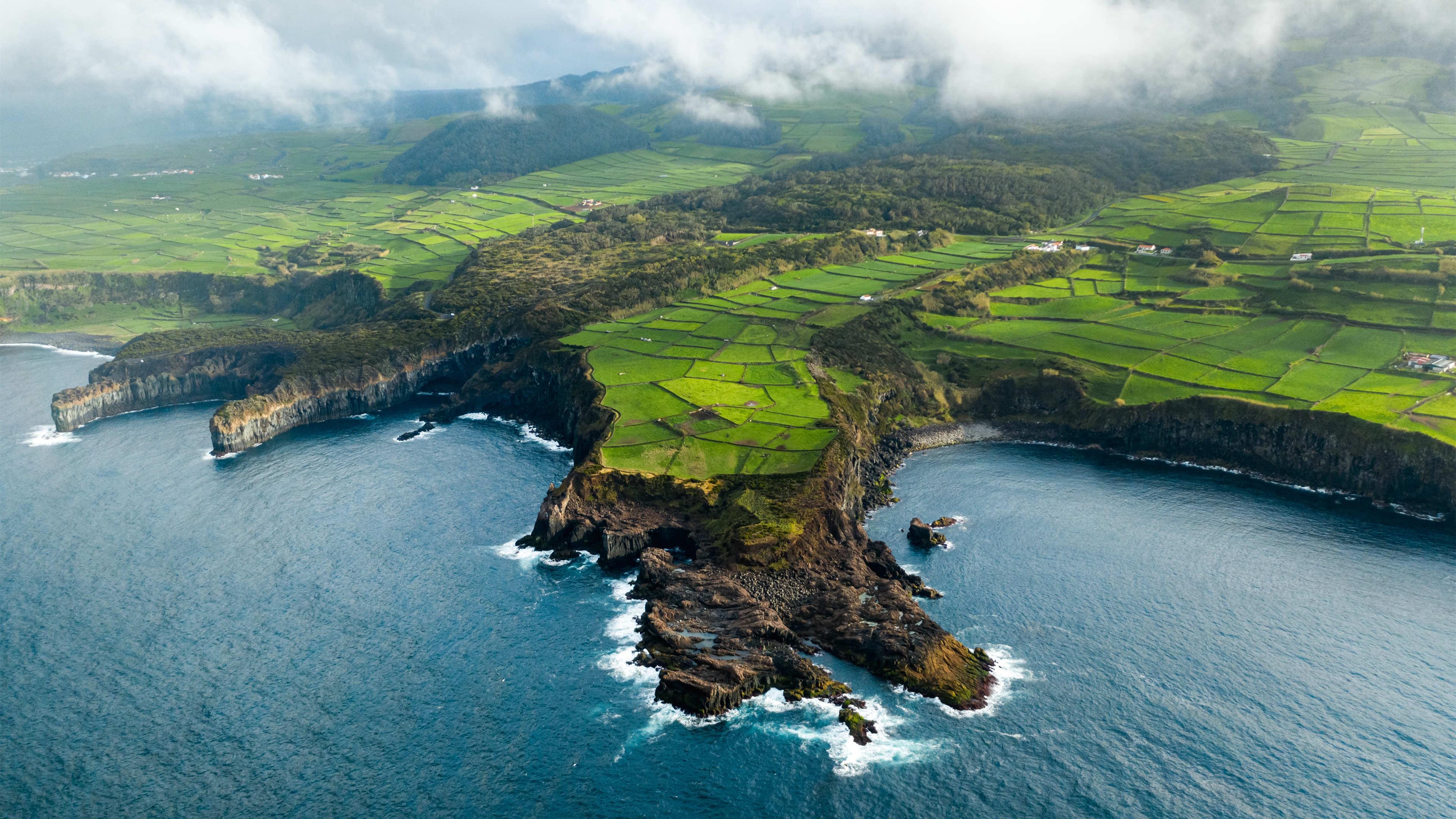 4K专区,绿色,梯田,海洋,自然风光