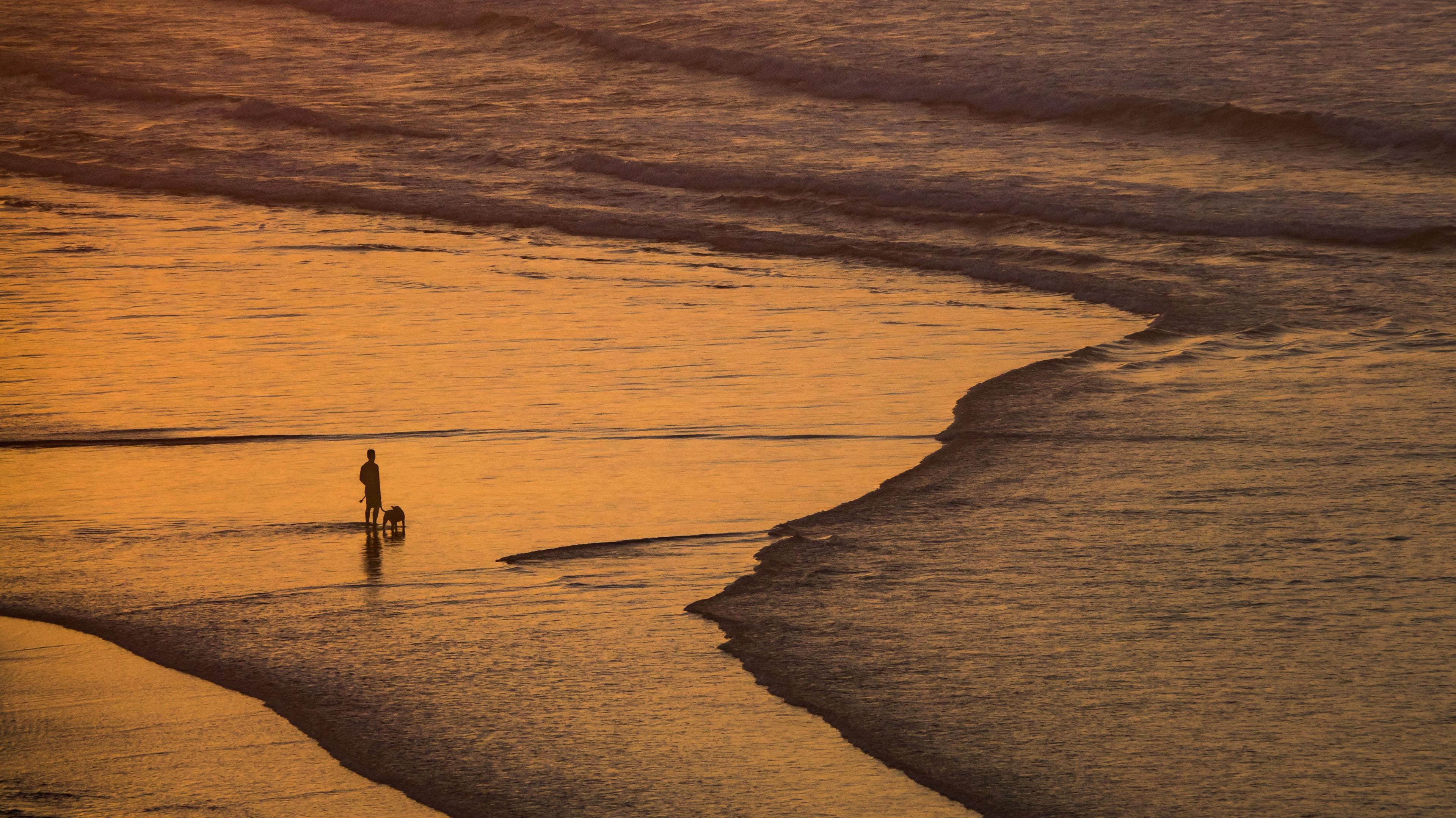 炫酷时尚,黄昏海滩,人与狗,海浪